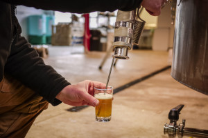 alarmist brewing fresh entrenched ipa