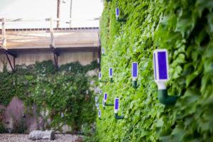 illuminated brew works wall